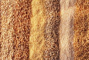 Various types of grain